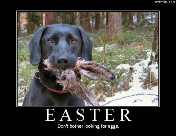 Happy Easter! Have a great day.
